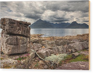 Elgol Coastline Wood Print by Fiona Messenger