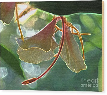 Wood Print featuring the photograph Elizabeth In Abstract by Deborah Smith
