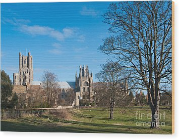 Wood Print featuring the photograph Ely Scenic by Andrew  Michael