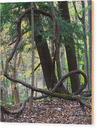 Embrace Wood Print by Barbara McMahon