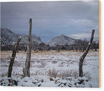 Wood Print featuring the photograph Embudo Canyon by Atom Crawford