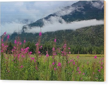 Emerging Mist Wood Print