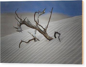 Emerging Tree Wood Print by George Oze
