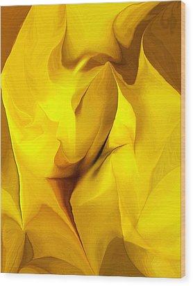 Emo-2 Wood Print by David Lane