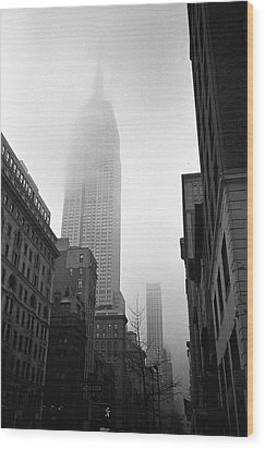 Empire State Building In Fog Wood Print by Adam Garelick