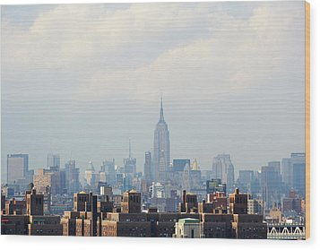 Empire State Building Seen From Lower Manhattan Wood Print by Ryan McVay