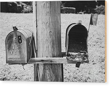 empty old used american private mailboxes one with birdsnest in Lynchburg tennessee usa Wood Print by Joe Fox