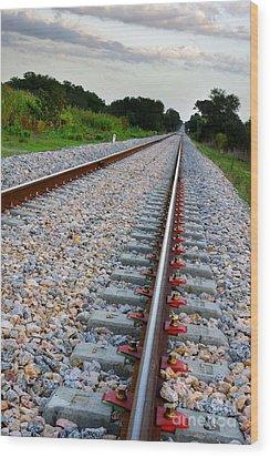 Empty Railway Wood Print by Carlos Caetano