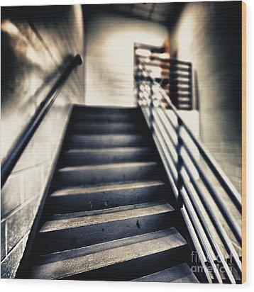 Empty Stairwell Wood Print by Skip Nall