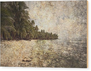 Empty Tropical Beach 2 Wood Print by Skip Nall