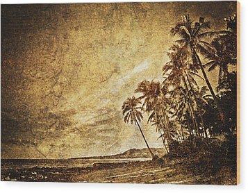Empty Tropical Beach 3 Wood Print by Skip Nall