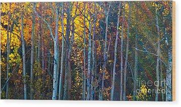 Enchanted Aspen Wood Print