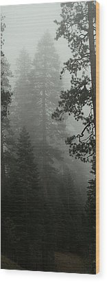 Enchanted Forest Cropped Wood Print