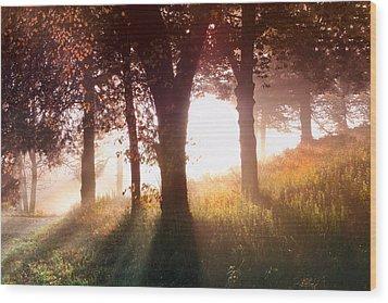 Enchanted Meadow Wood Print by Debra and Dave Vanderlaan