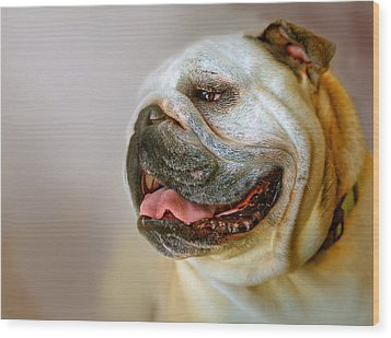 English Bulldog Willie In Profile Wood Print by Dorothy Walker