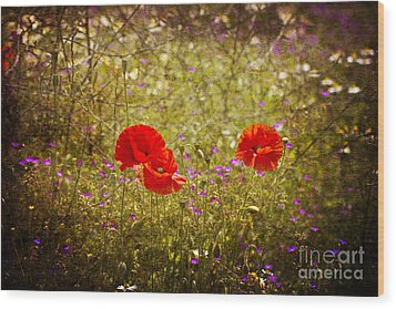 Wood Print featuring the photograph English Summer Meadow. by Clare Bambers - Bambers Images