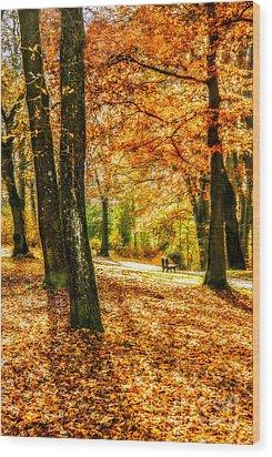 enjoy the autmn II Wood Print by Hannes Cmarits