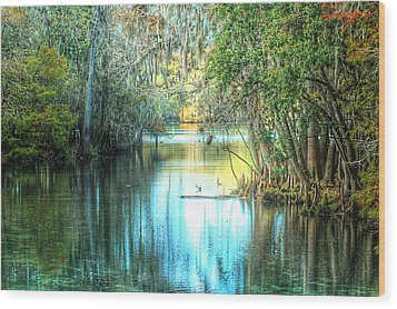 Entrance To Swanee Wood Print by Ronald T Williams