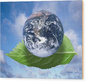 Environmental Issues Wood Print by Victor de Schwanberg  and Photo Researchers