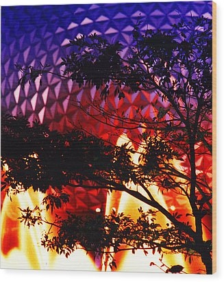 Wood Print featuring the photograph Epcot Dream by Mike Flynn