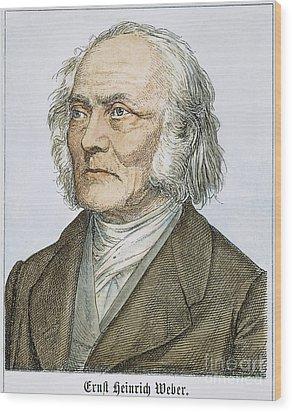 Ernst Heinrich Weber Wood Print by Granger