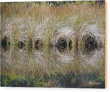 Wood Print featuring the photograph Escape Hatches by Kay Lovingood