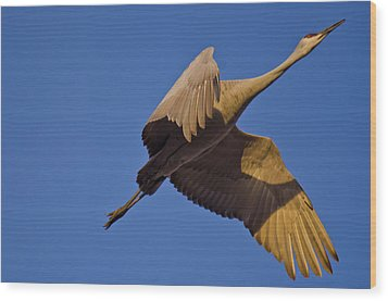 Escape Velocity Wood Print by Harry Strharsky