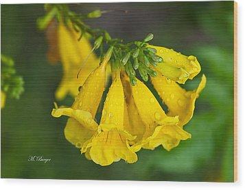 Esperanza - Yellow Bells Wood Print by Marlena  Burger