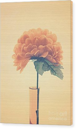 Estillo - 01i2 Wood Print by Variance Collections