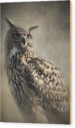 Wood Print featuring the photograph European Eagle Owl by Ethiriel  Photography