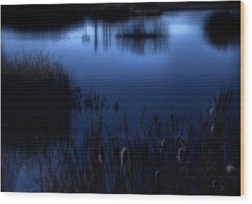 Evening At The Duck Pond Wood Print by Utah Images