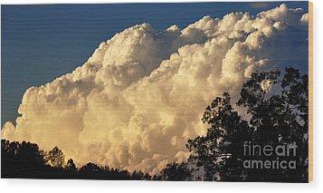 Evening Clouds Wood Print by Thomas R Fletcher