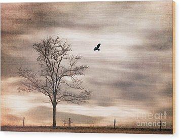 Evening Flight Wood Print by Darren Fisher