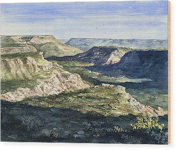 Evening Flight Over Palo Duro Canyon Wood Print by Sam Sidders