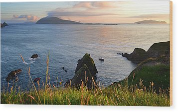 Evening In Kerry Wood Print by Barbara Walsh