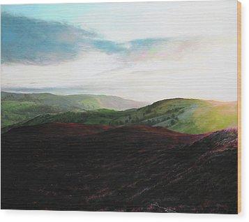 Evening Landscape Towards Llangollen Wood Print