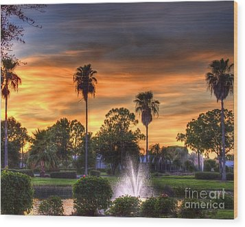 Evening Palms Wood Print by Anne Raczkowski