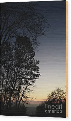 Evening Silhouette At Sunset Wood Print by Bruno Santoro