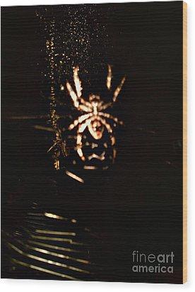 Evil Charlotte Wood Print by Jayme X