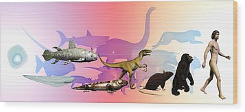 Evolution Of Man Wood Print by Christian Darkin