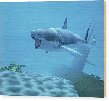 Example Of Reality Centre Graphics, Shark Wood Print by David Parker
