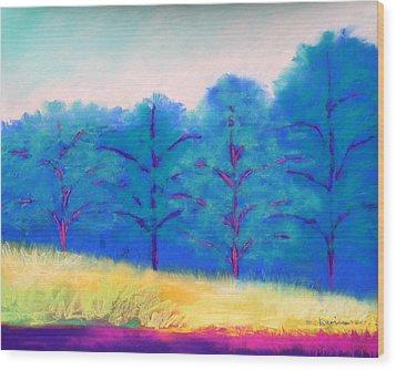 Exciting Landscape Wood Print by Karin Eisermann