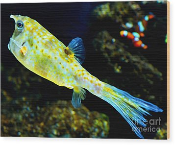 Exotic Fish Wood Print by Pravine Chester