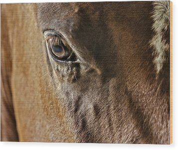 Eye Of The Horse Wood Print by Susan Candelario