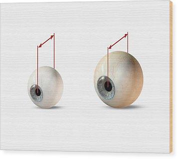 Eye Size Comparison, Artwork Wood Print by Claus Lunau