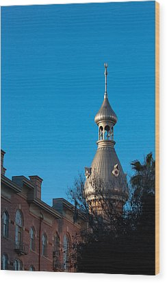 Wood Print featuring the photograph Facade And Minaret by Ed Gleichman