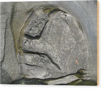 Wood Print featuring the photograph Face In The Rock by Brian Sereda