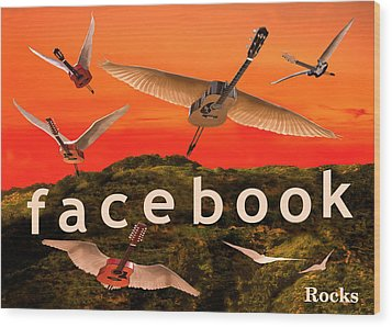 Facebook Rocks Wood Print by Eric Kempson