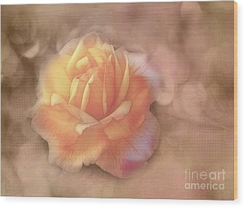 Faded Memories Wood Print by Judi Bagwell