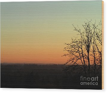 Fading Day Wood Print by Gayle Swigart
